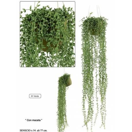 Planta colgante artificial senecio con maceta